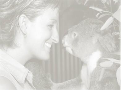 Ayesha_koala2